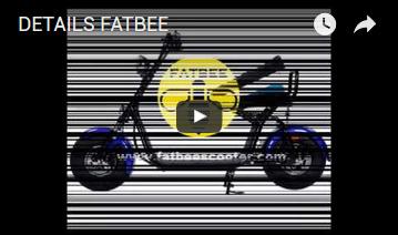 Detalles Fatbee